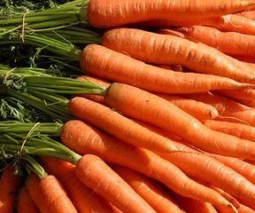 Вялая морковка как ее сделать не вялой