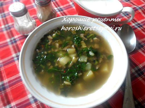 Суп из сушеных слив с ревенем
